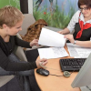 Как выбрать страховую компанию для КАСКО