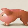 РСА отказывает в выплате страховая банкрот